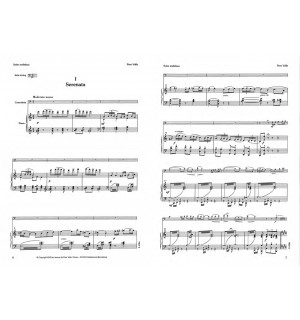 Suite andaluza (Solo tunning)