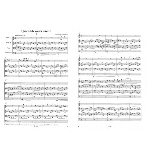 Quartet de corda núm. 1 (1990)