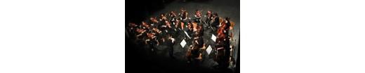 Orquestra de cambra